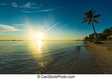 bello, tropicale, sopra, spiaggia, alba