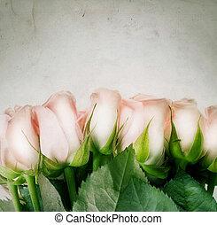 bello, vendemmia, roses., disegnato