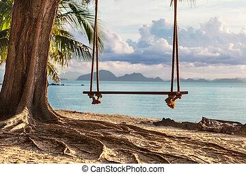 bello, viste, legno, albero, th, altalena, spiaggia