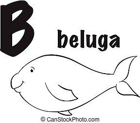 Beluga coloring page