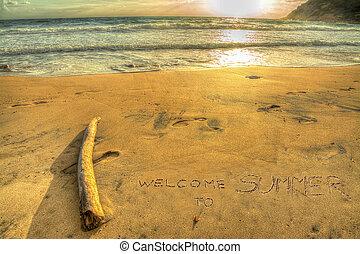 bem-vindo, para, verão, escrita, em, pôr do sol