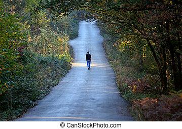 bemanna promenera, allena, vägen, in, den, skog