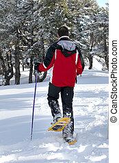 bemanna promenera, genom, den, snö
