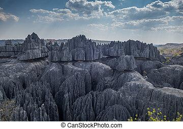Bemaraha tsingy nature reserve view, Madagascar