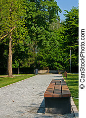 Bench and avenue in park