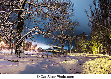 bench and silhouettes of a couple on snowy park in the night lights