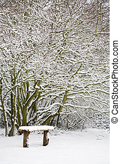 Bench and woods in snow