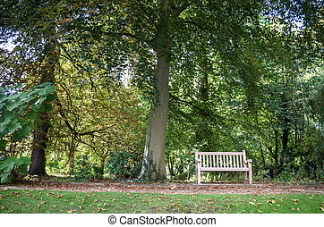 bench at the park cambridge