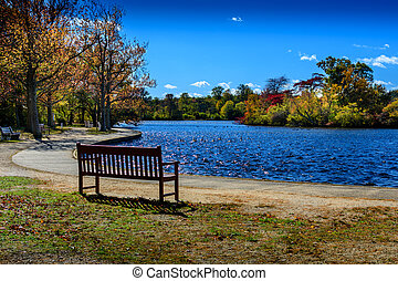 Bench by a lake in fall