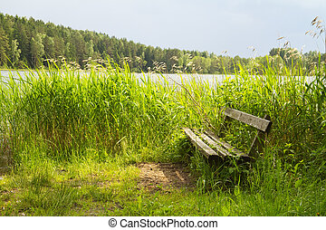 bench by the lake