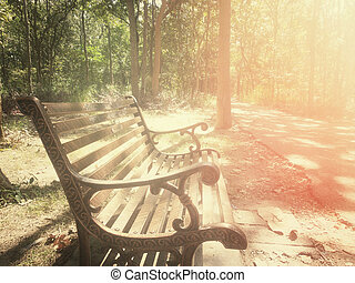 Bench chair in the park