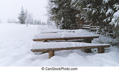 Bench covered in snow while more snow falls. - Winter...