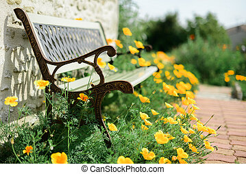 Bench in a garden surrounded by poppies