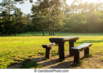 Bench in autumn