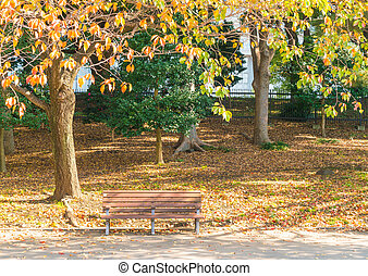 Bench in autumn park