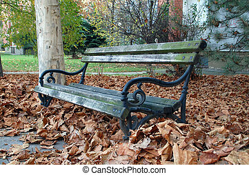 Bench in fallen leaves