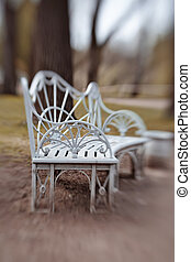 Bench in Pavlovsk Park - Pavlovsk Park. Bench in the park of...