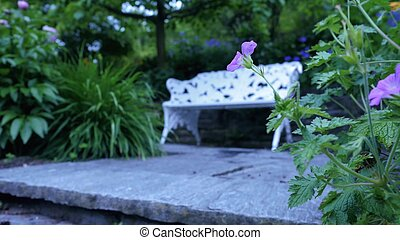 Bench in the garden for relaxation