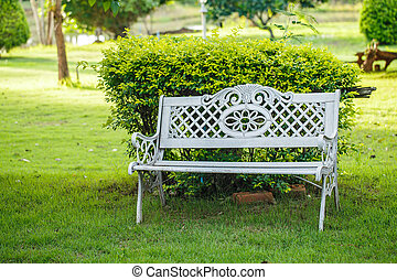 bench in the garden with lawn.