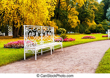 Bench in the park in fall time