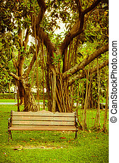 One bench in the park in the summer.