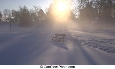 bench in winter park on snow