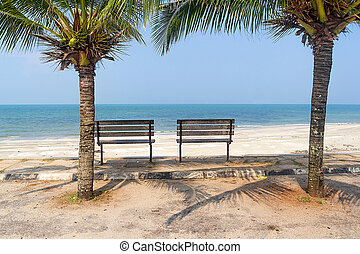 Bench near beach with green coconut tree