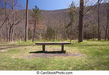 Bench Of Tranquility - Wooden bench to sit on in the woods. ...