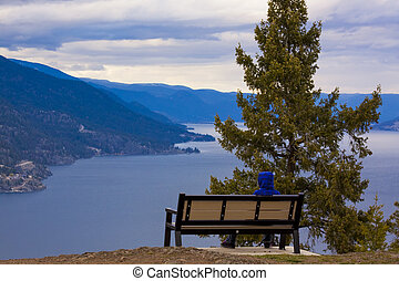 Bench On a Mountain Overlooking Lake