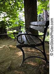 Bench on garden