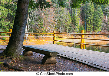 bench on the wooden pier of Synevyr lake in autumn....