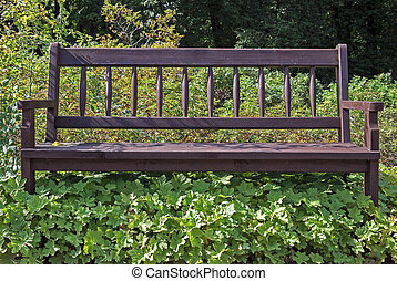 Bench overgrown with weeds