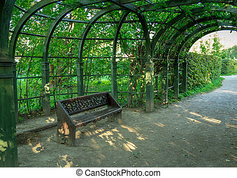Bench placed under the arc of trees in the park