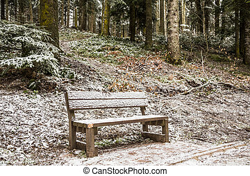 Bench under snow at park in winter time