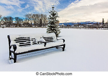 Bench Under the Snow in the City
