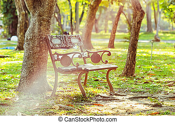 Bench under tree in the green garden with sun light