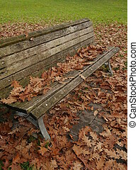 bench with leafes in autumn