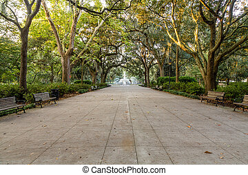 Benches in Forsyth Park
