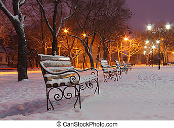 benches in park at winter night