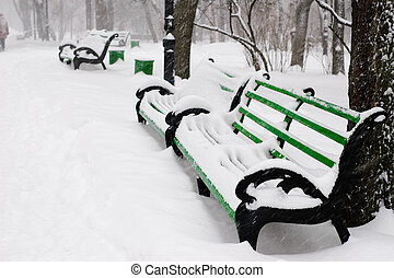 benches in the winter park