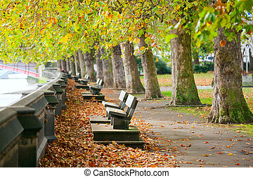Benches on Thames Embankment - Benches on the Thames in...