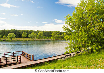 benches on the shore of a pond on summer day