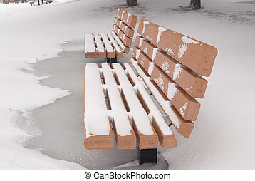 benchs in a park - This is two orange bench in a park in a...
