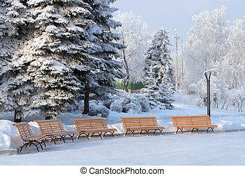 benchs in snow winter park - five benchs in snow winter park