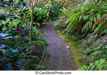 Bended path in tropical garden