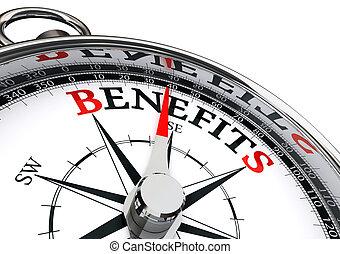 benefici, concettuale, bussola