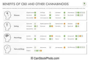 Benefits of CBD and Other Cannabinoids horizontal business ...