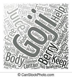 Benefits of Goji juice Word Cloud Concept Text Background