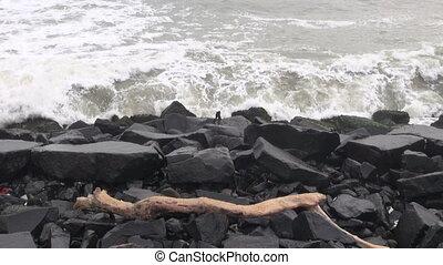 Bengal bay sea waves on black coast
