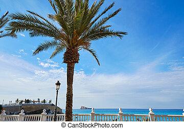 benidorm in mediterranean coast